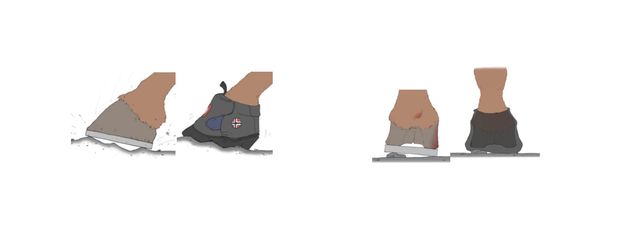 Equine Fusion Hufschuhe und Eisen im Vergleich